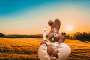 Das Bild zeigt einen Schokoladen-Osterhasen