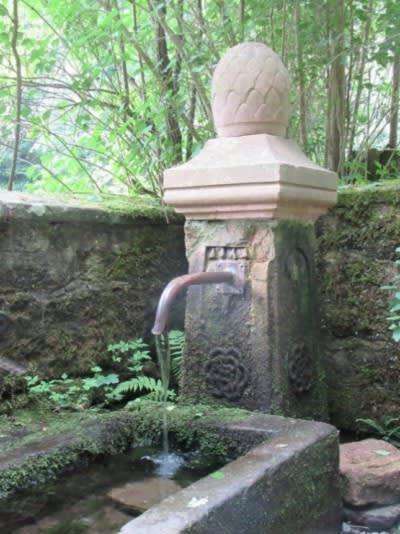 Craniosacral Healing Ausbildung Seminar - Ein Brunnen im Wald in der Nähe zum Heilhof Vöckelsbach