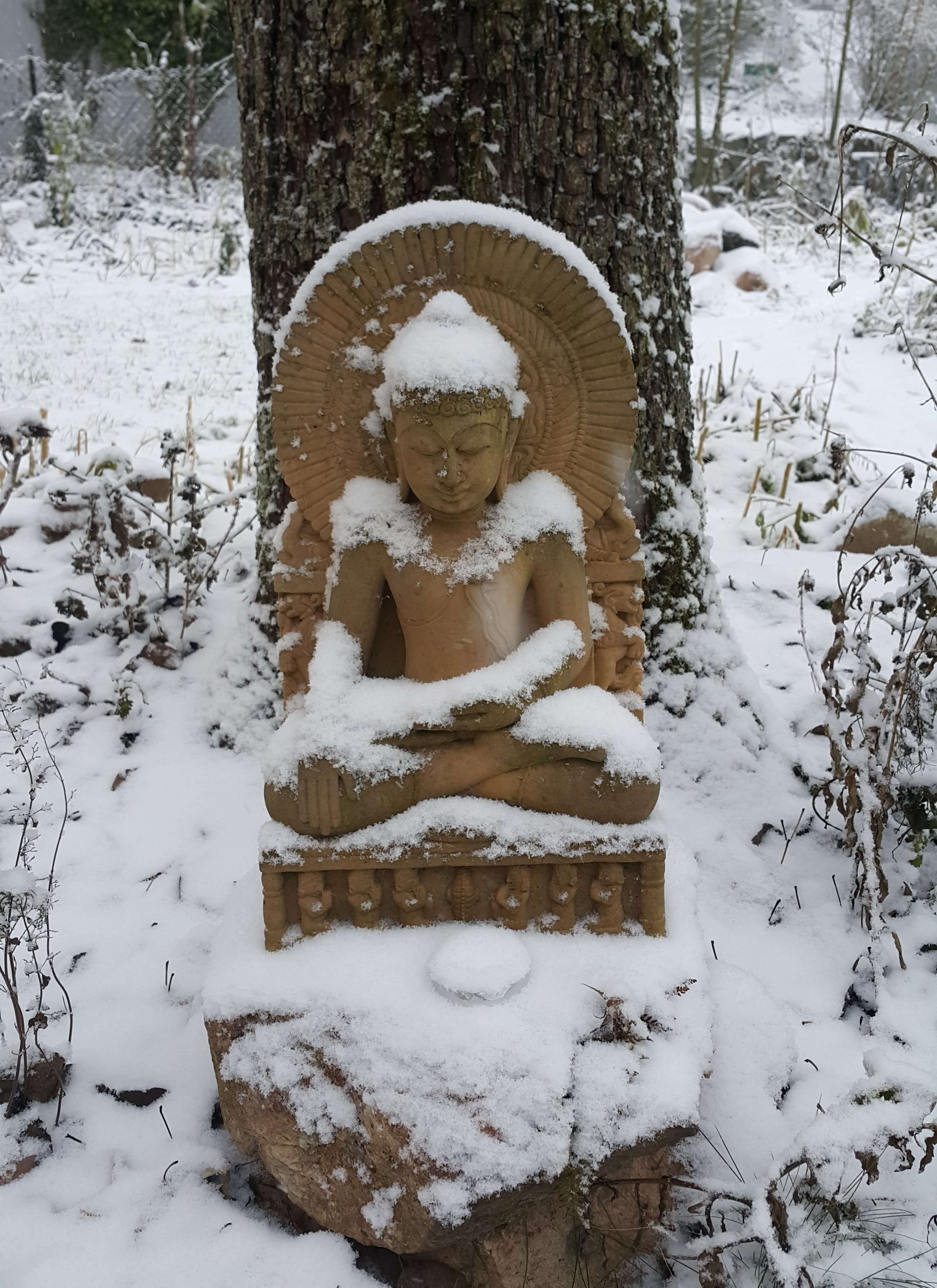 Craniosacral Healing Ausbildung Seminar - Buddha Statue im Schnee