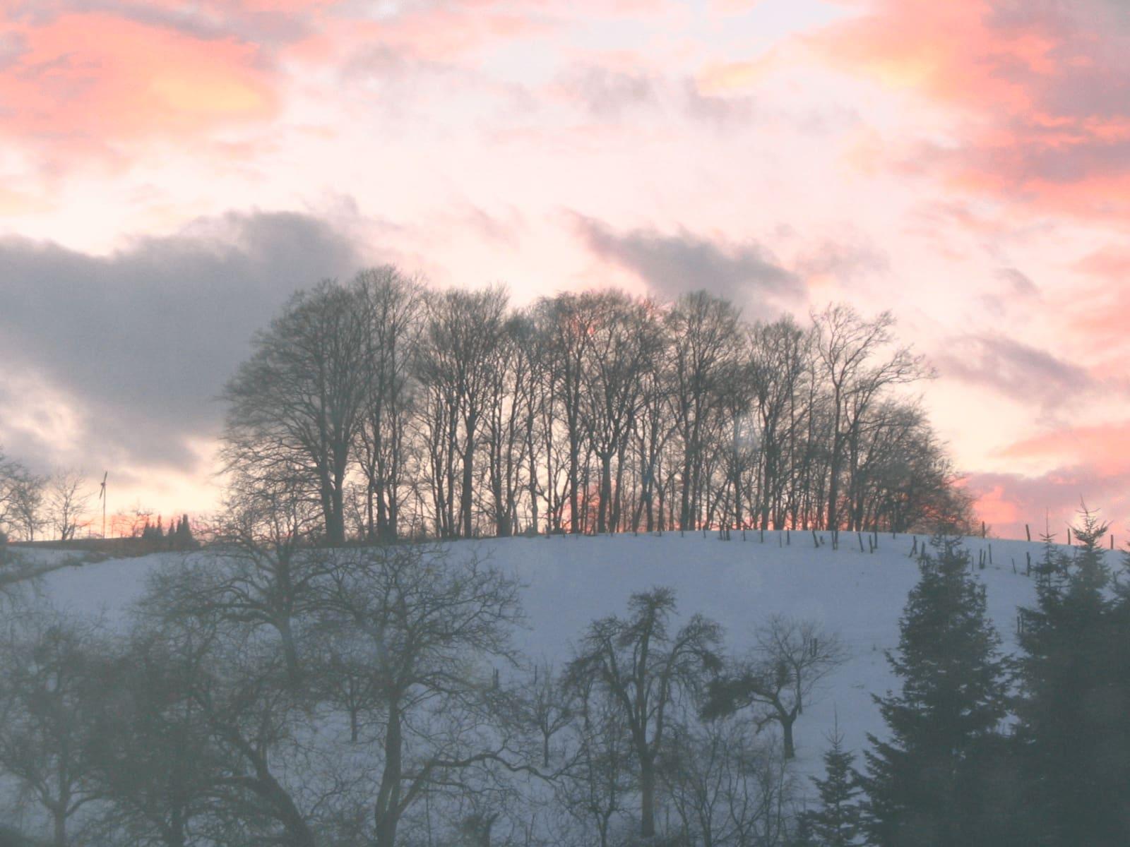 Cranio Sacral Heilmethode Kurse + Ausbildung Vöckelsbach Hain im Winter