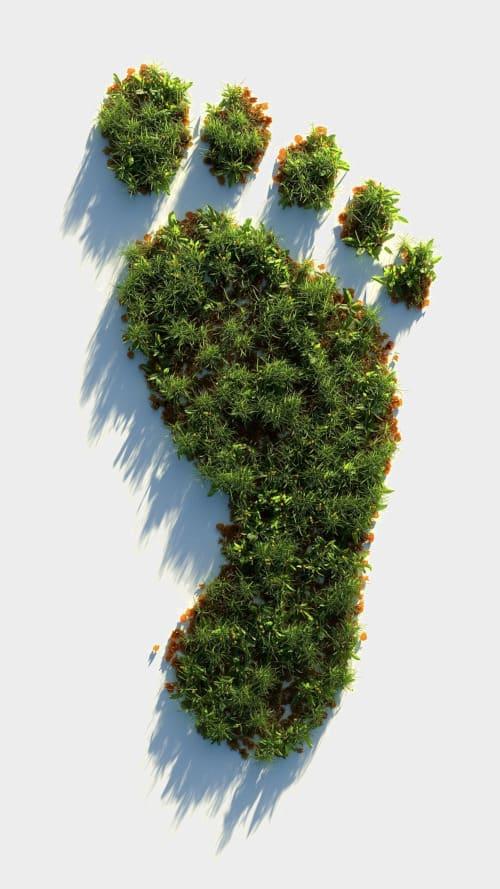 Holzpellets sorgen für einen grünen Klima-Fussabdruck