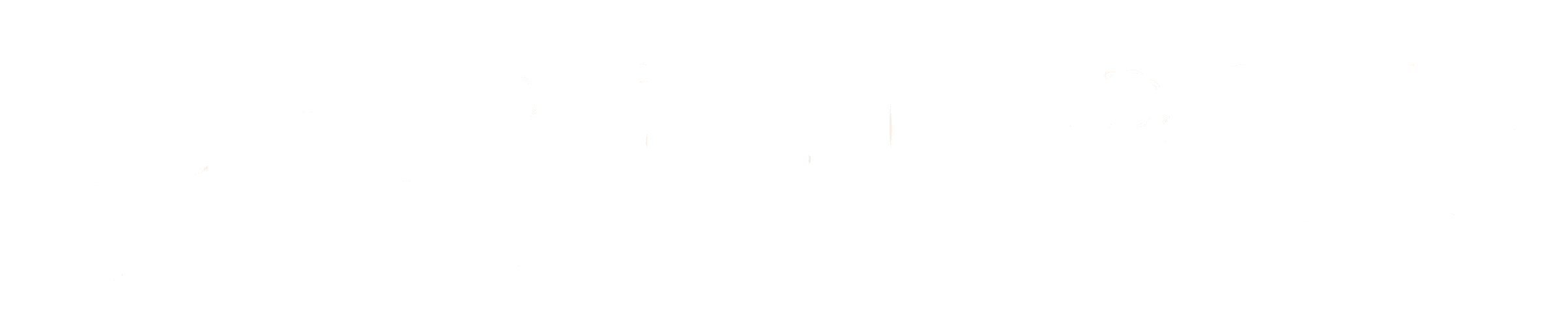 Bergen Group Logo transparent weiß