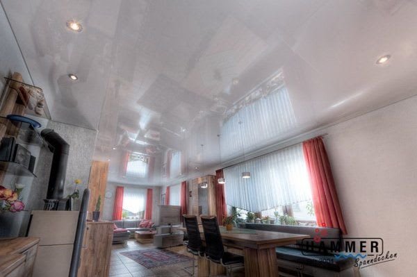 Wohnzimmer in Stuttgart - Spanndecke Reinweiss Glanz