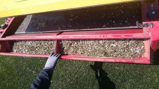 Schmutz auf einem Kunstrasen