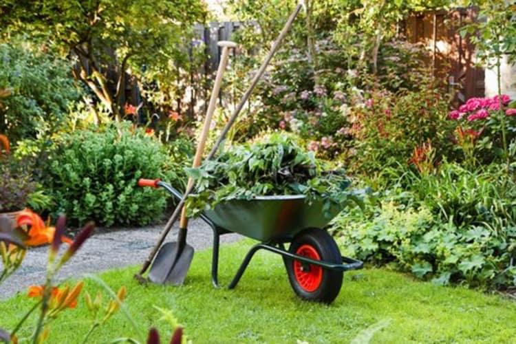 Pflege Vorgarten mit Schubkarre