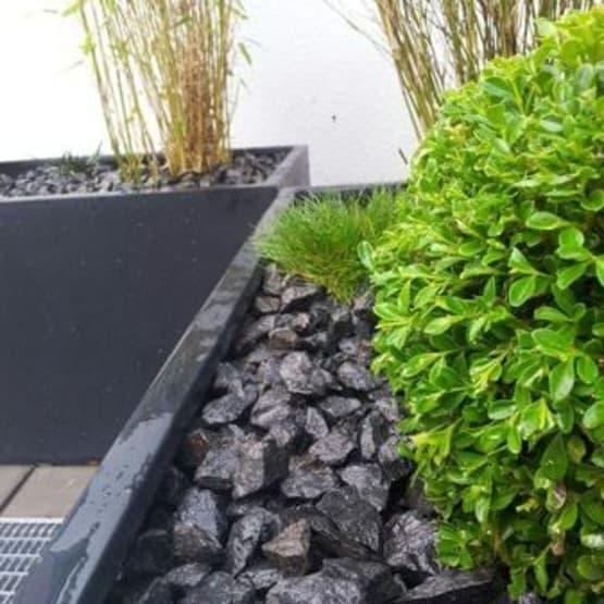Gartengestaltung grün Stein