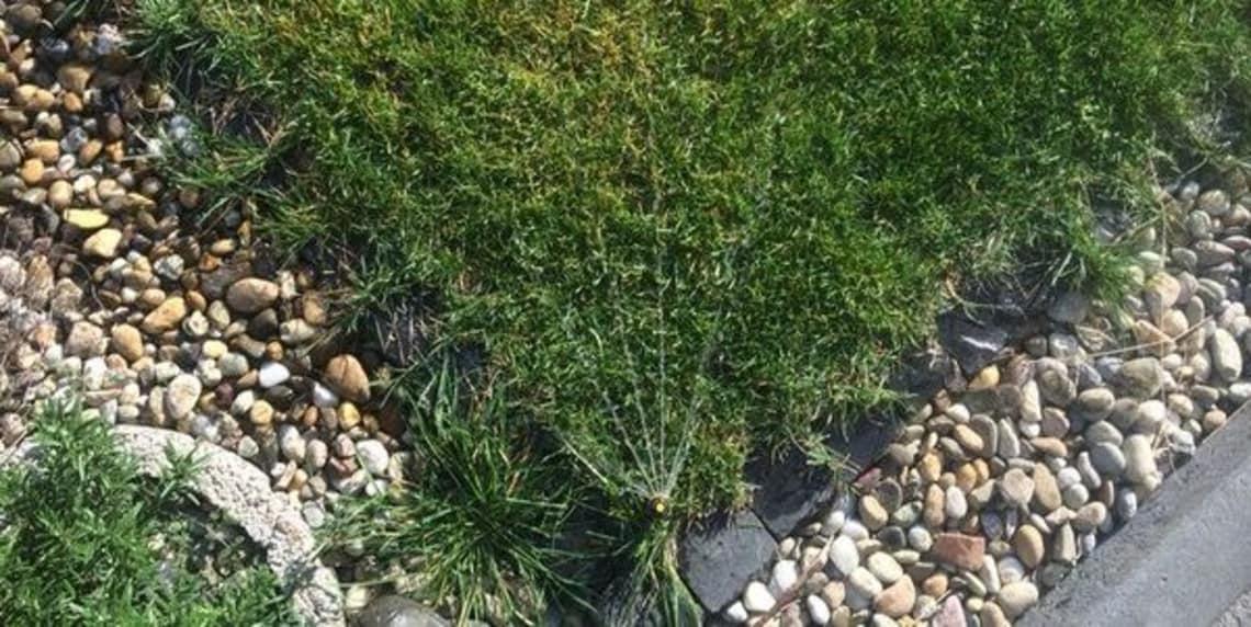 Rasensprengertechnik um ihren Rasen grün zu halten