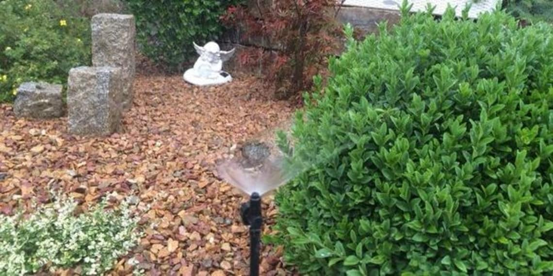 Mit Hilfe von Florian Feth ihren Garten bewässern