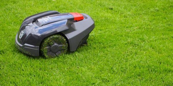 Mit Rasenmähern von Florian Feth Ihren Rasen in Stand halten