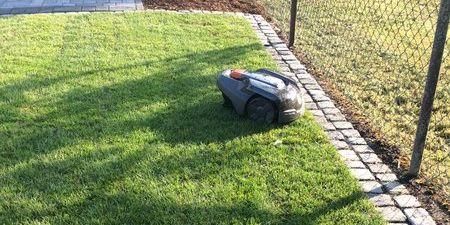 Ein Automower Rasenmäher Roboter von Florian Feth