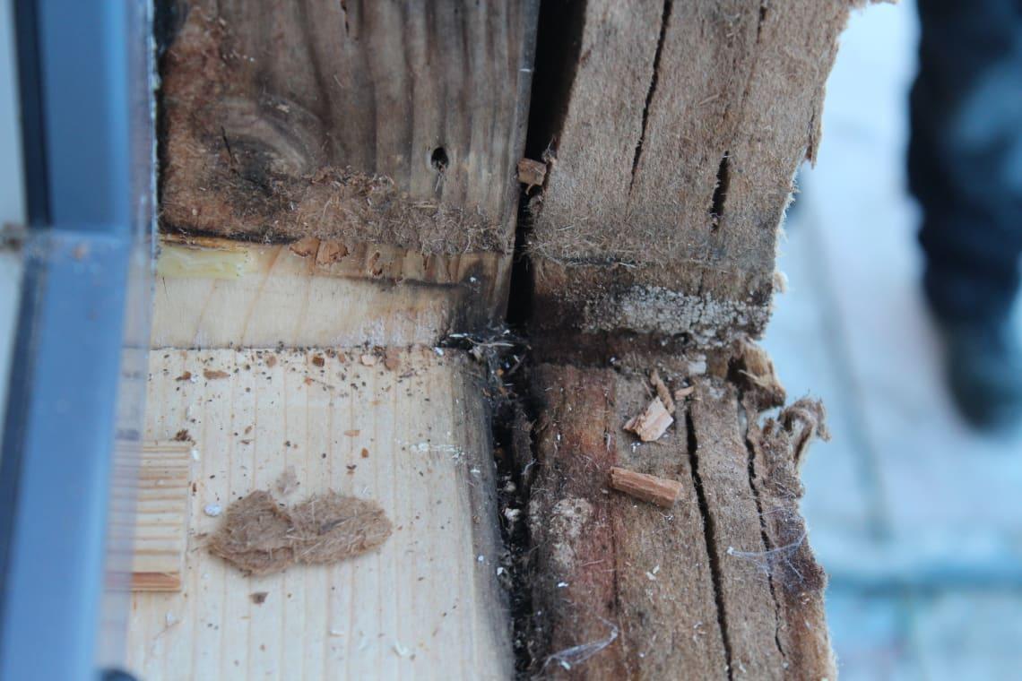 Angefaulte Balken Fertighaus, da Fensterbankabdichtung fehlt