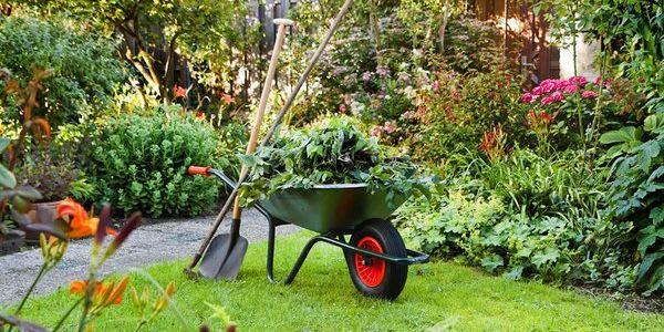 Gartenpflege von Florian Feth für Rasen, Beete und den ganzen Garten
