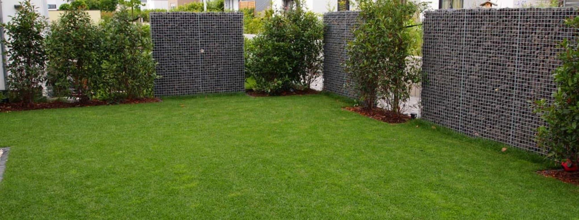 Ein gepflegter Rasen durch Gartenbau von Florian Feth