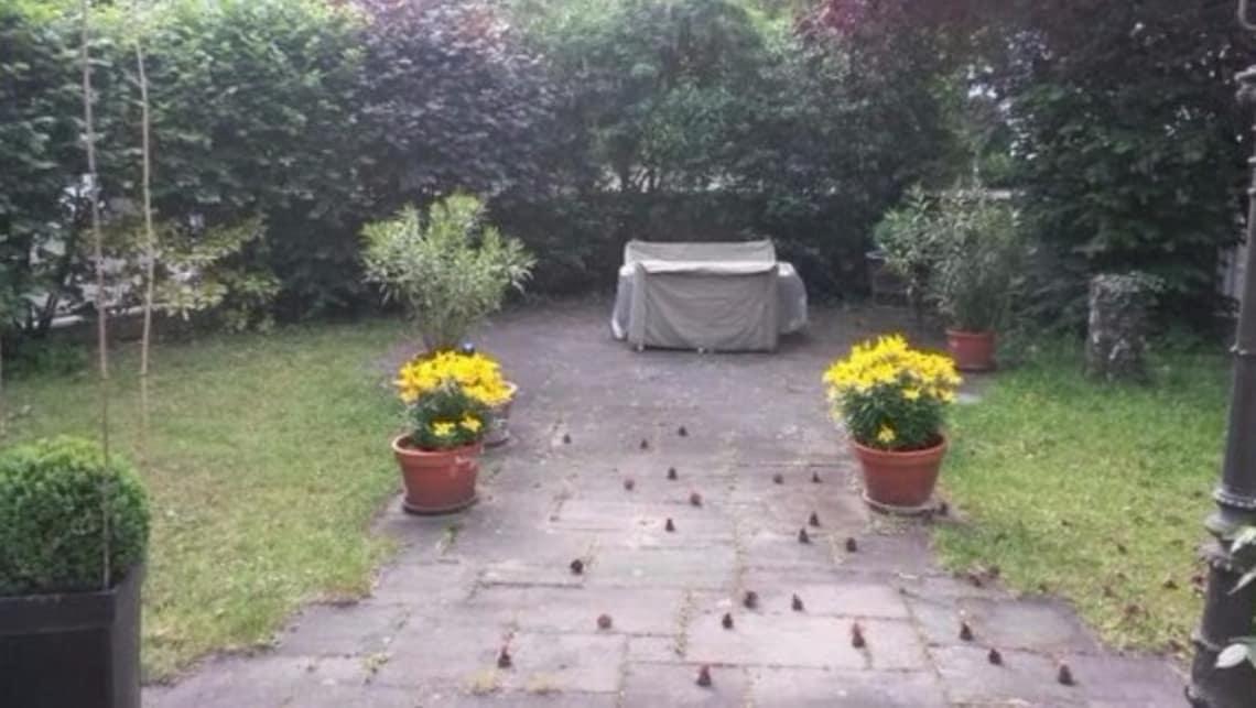 Gartenumgestaltung Terrasse Sicht auf Sitzecke mit runder Bepflasterung