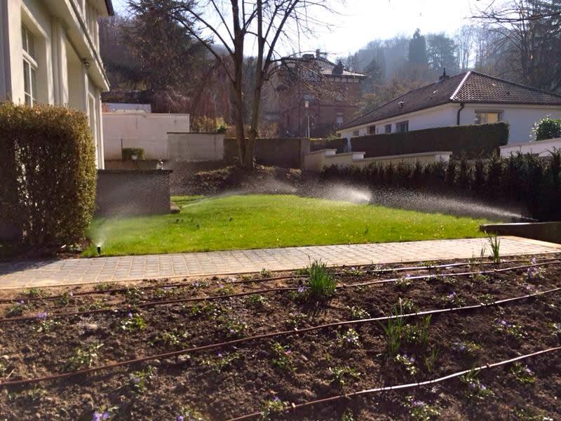 Vorgarten grüner Rasen Bewässerungsanlage