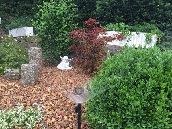 Beregnungsanlage im Garten