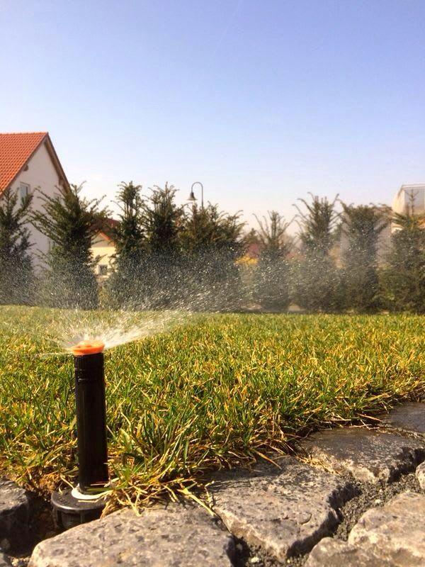 Bewässerungsanlage in der Abendsonne