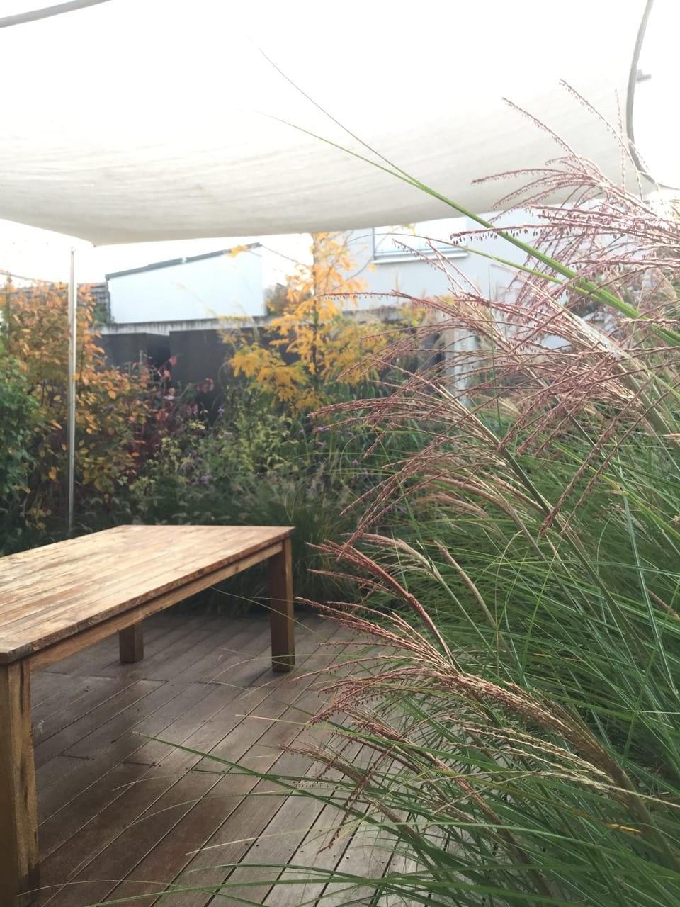 Terrasse mit Tisch und Bepflanzung
