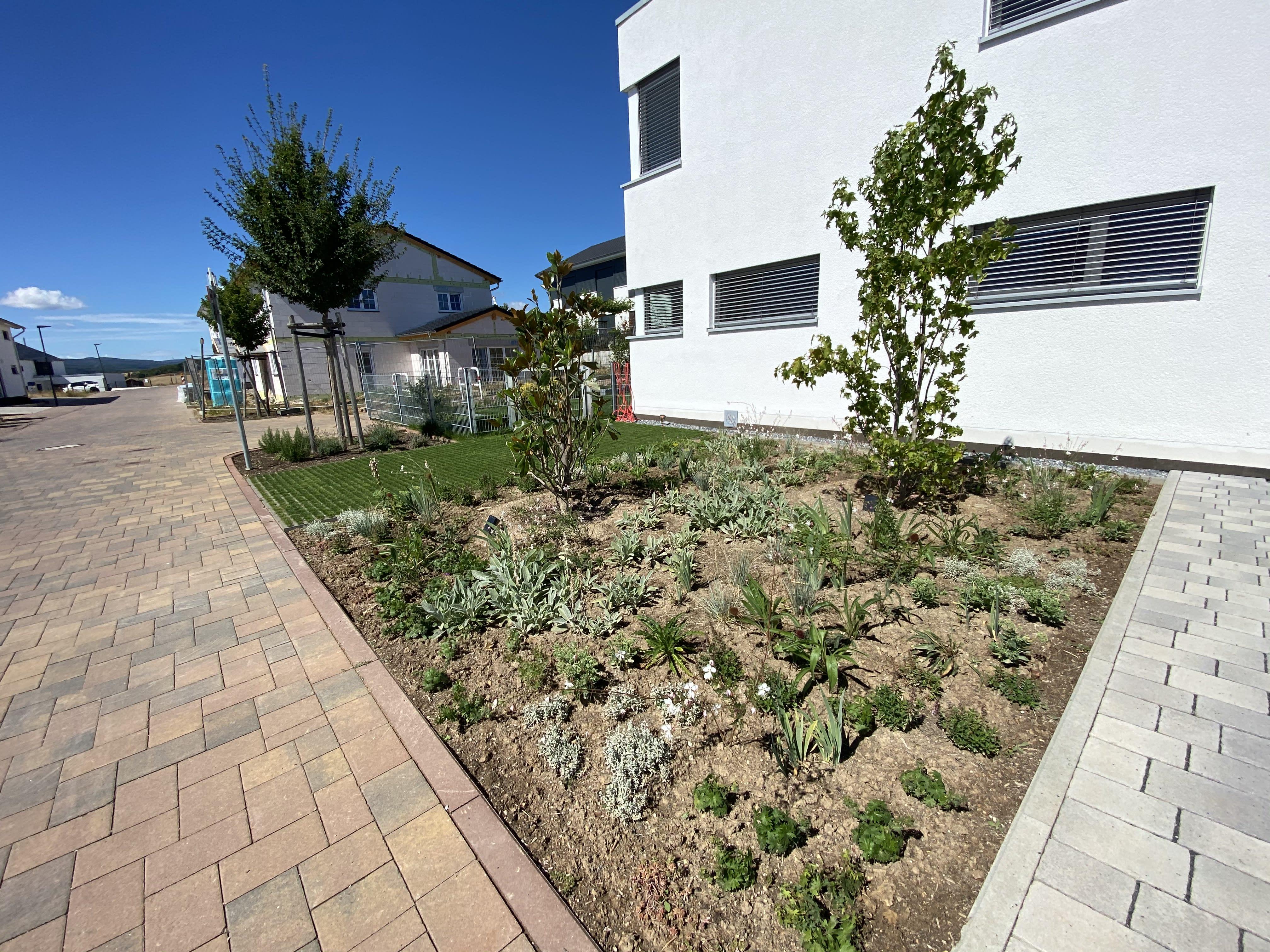 Bepflanzung vor Gebäudekomplex