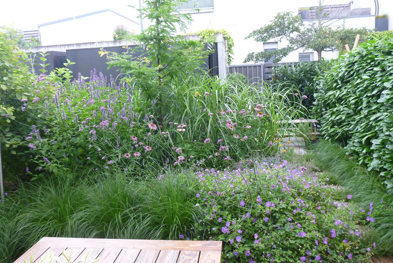 Garten mit Holzterrasse Sommer Bepflanzung