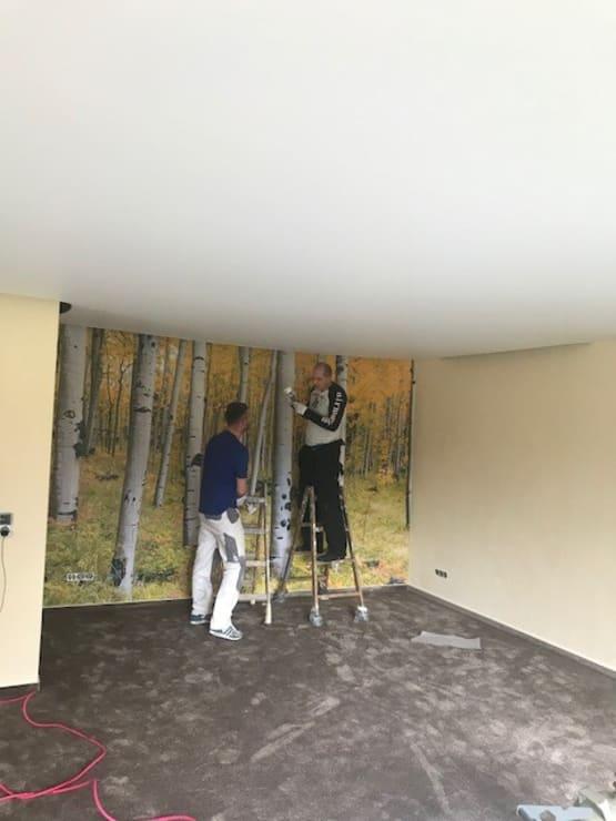Waldbild an der Wand
