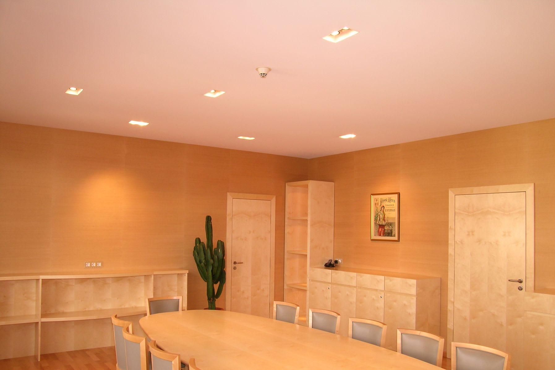 Spanndecke mit Beleuchtung Wand mit Kaktus