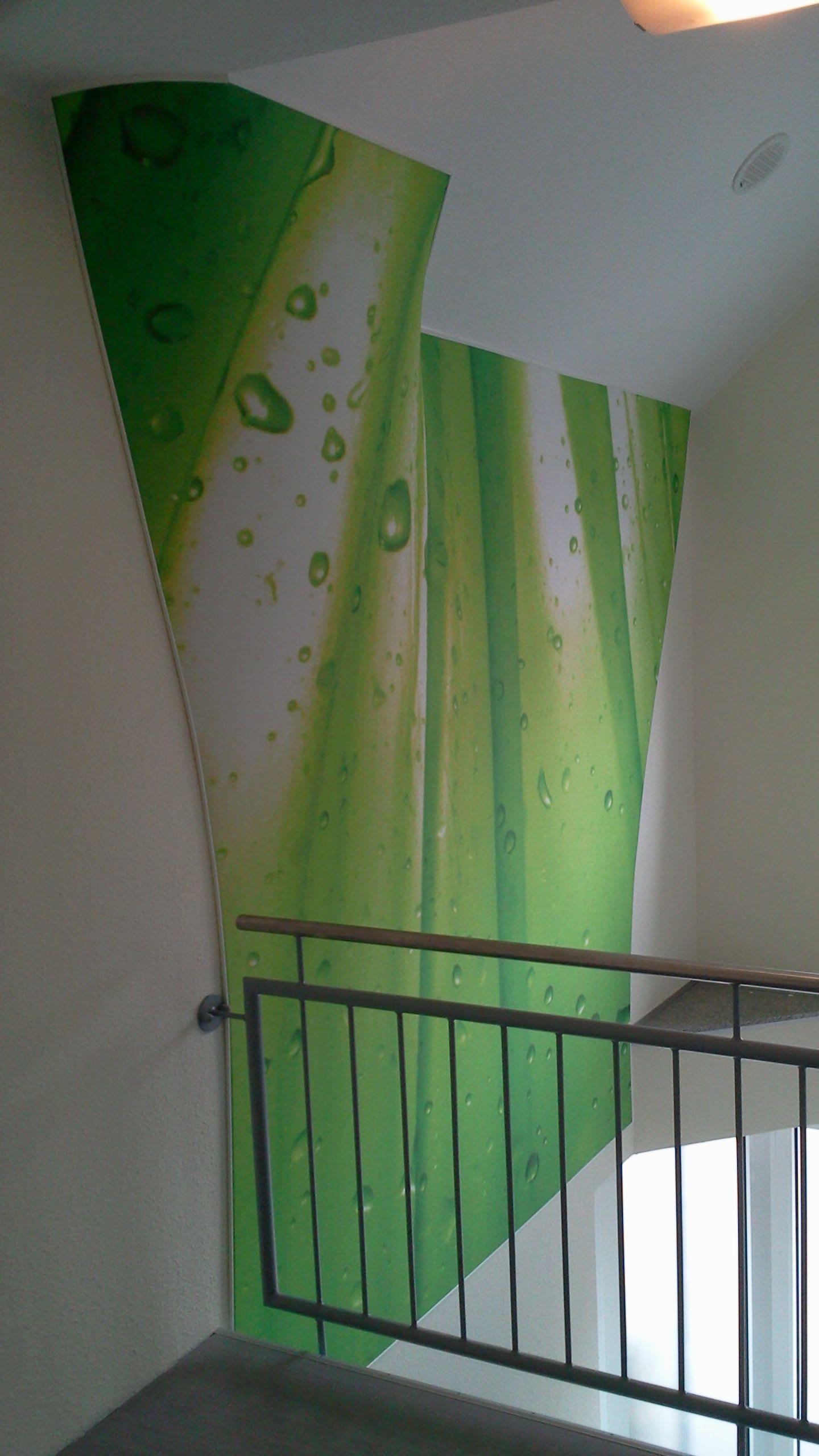 Spannwand im Flur grün mit Wassertropfen