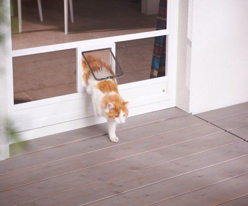 Insektenschutz Sonderlösungen Katzenklappe Insektenschutzsysteme