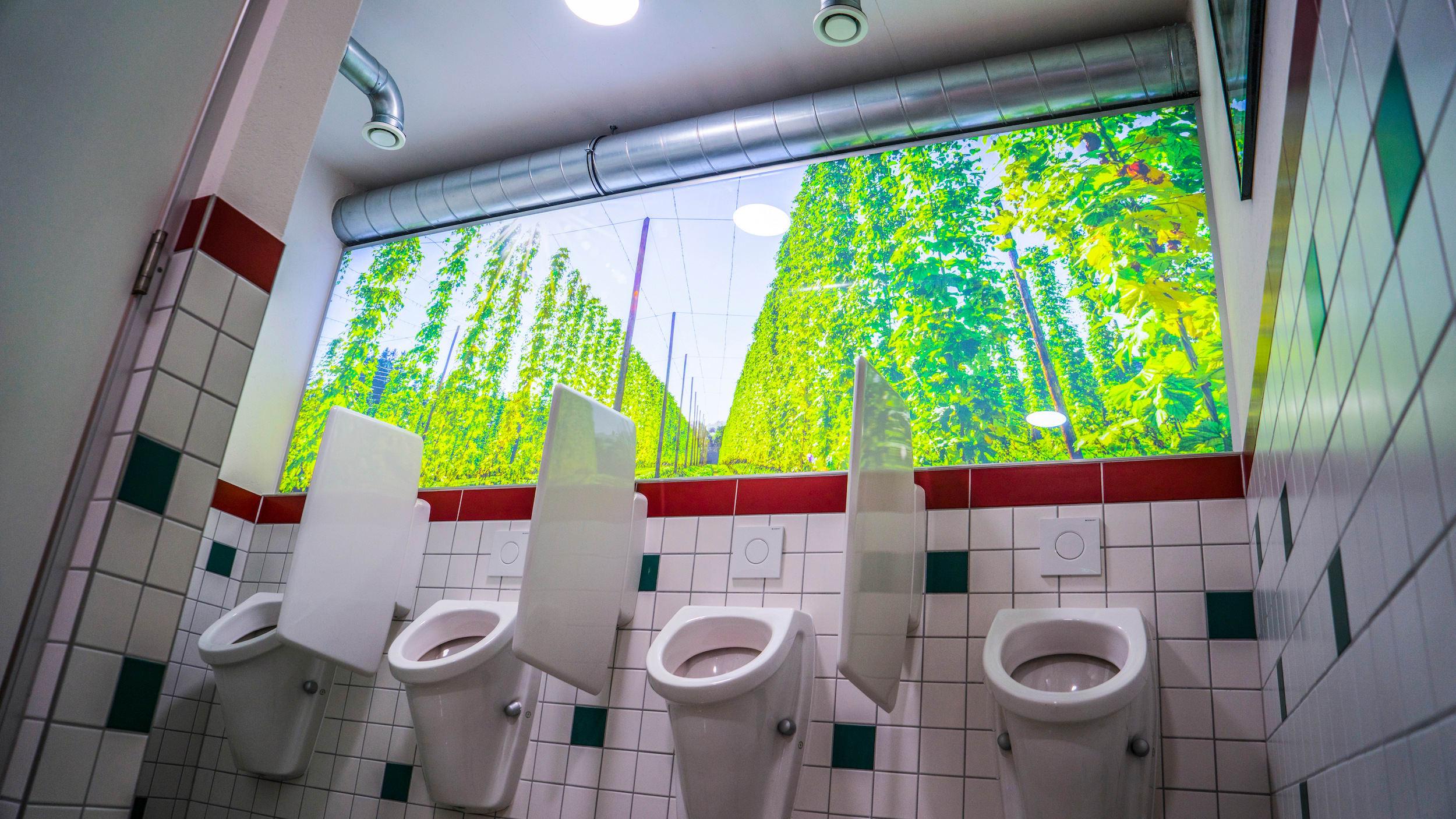 Bedruckte beleuchtete Wand mit Natur im Herrenklo