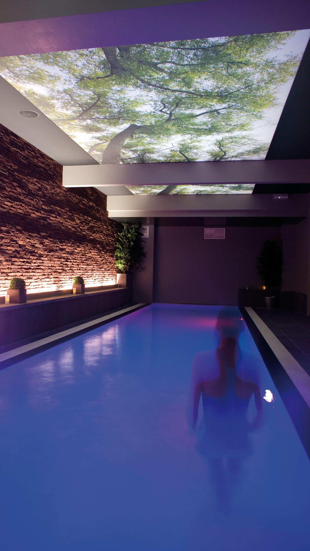 Pool mit individuell bedruckter hinerleuchteter Decke Bäume Druck