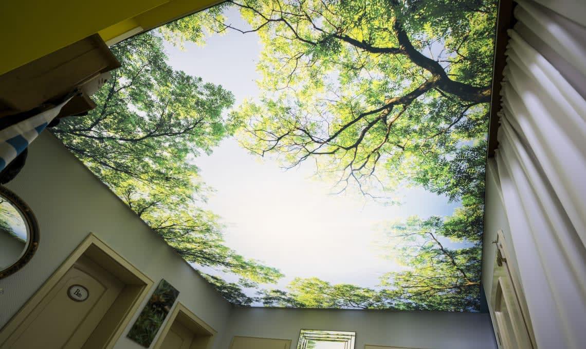 Lichtdecke mit Waldbild