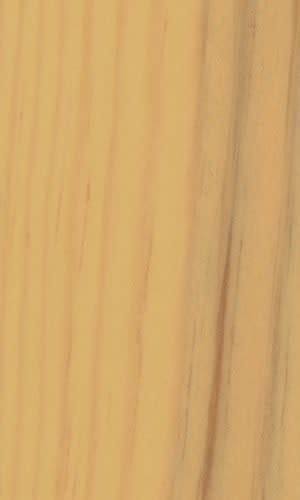 Kiefer 2720