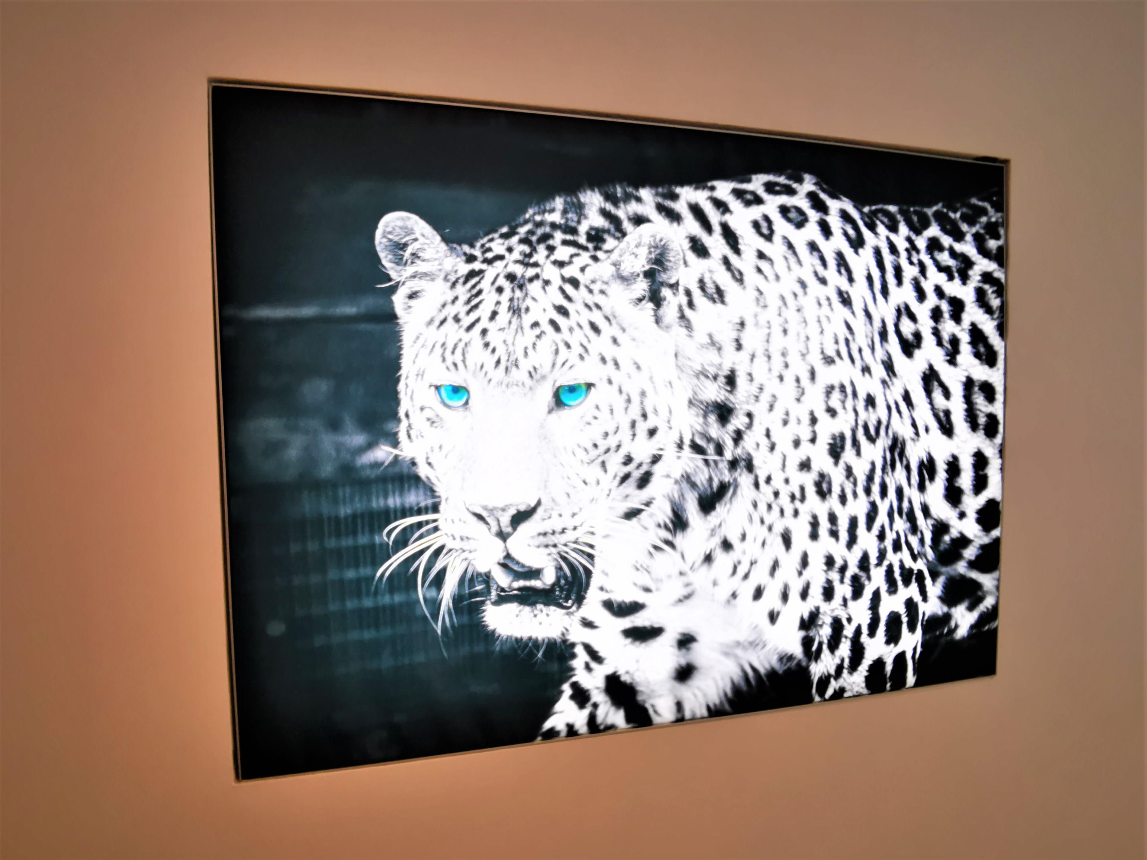 LED Wanbild