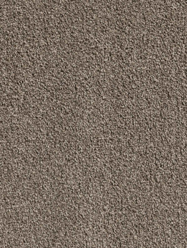 Carpet Flooring Range Lavish Yates Choices Flooring