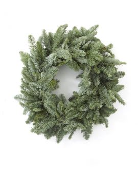 Plain Noble Fir Christmas wreath