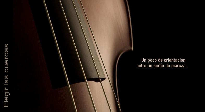 Cómo elegir las cuerdas del violín