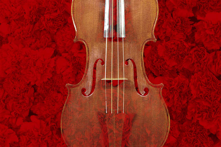 """Algunas cosas que aprendí sobre violín flamenco con """"Batio"""""""