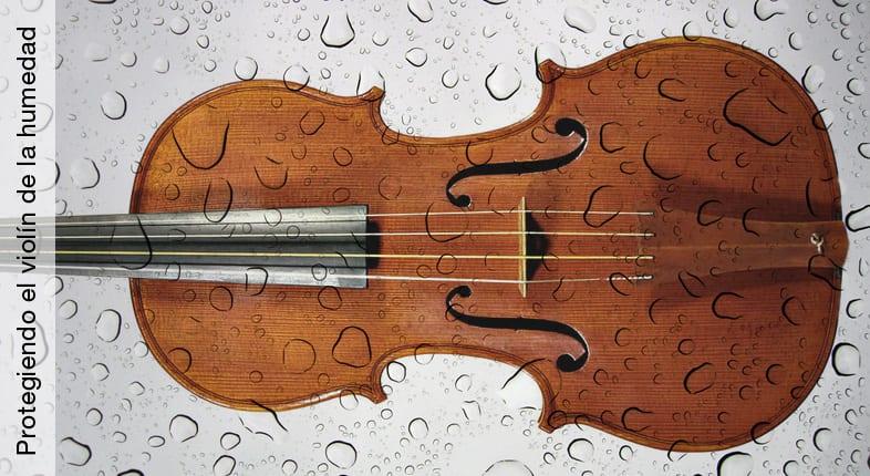 Protegiendo el violín de la humedad.
