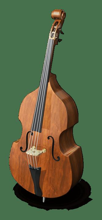 Convocatoria para contratación temporal de solista contrabajo en la Orquesta Sinfónica de Castilla y León