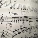 Cómo afrontar los estudios y métodos de violín correctamente.