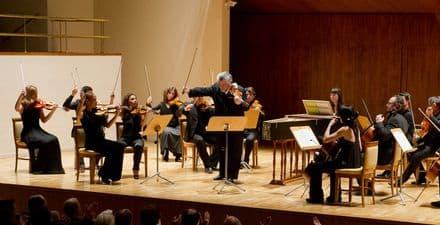 La Orquesta Clásica Santa Cecilia busca cubrir varios puestos de violín