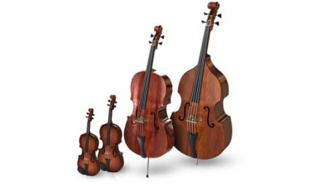 Pruebas para la Orquesta Joven de la OSG