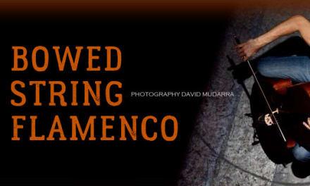 Curso de flamenco para cuerda frotada