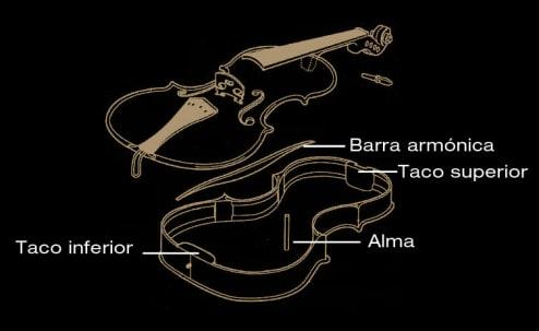 El violín por dentro