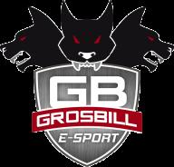 GrosBill Esport