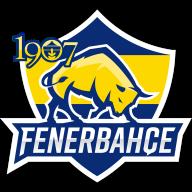 1907 Fenerbahçe Academy