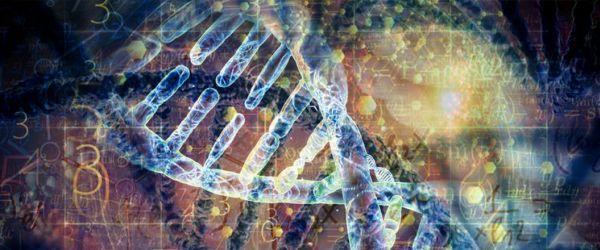 Genetic-algorithms