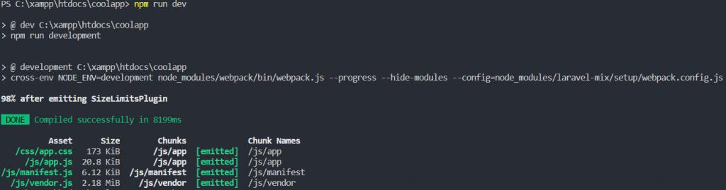 Laravel npm run dev