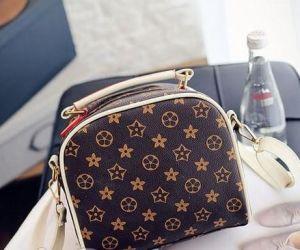 2e58107067b8 Fashionable Cosmetics Mini Bag