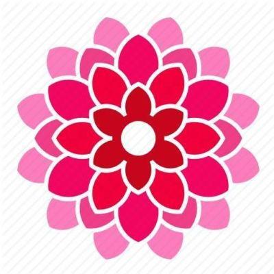 dev/115662/115662:profile